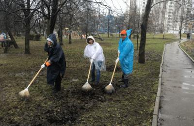 Депутаты муниципального округа Чертаново Центральное приняли участие в общегородском субботнике