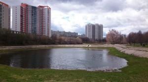 В районе Чертаново Центральное прошли общественные слушания по развитию территории Кировоградских прудов