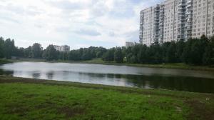 Пруд в районе Чертаново Центральное