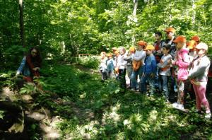 Активный гражданин голосует за мероприятия в Битцевском лесу