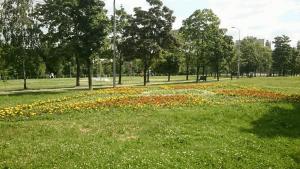 Цветник в Парке 30-летия Победы