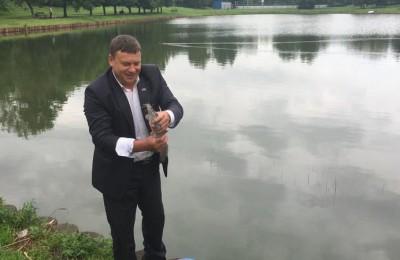 Депутат Сергей Жабин выпускает рыбу в пруд