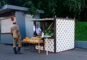 Бахчевой развал в районе Чертаново Центральное
