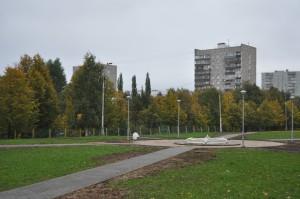 Укладка новых пешеходных дорожек в парке