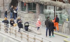 Гиды столичных музеев проведут 16 бесплатных экскурсий в Московском зоопарке