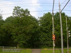 Один из светофоров в Южном округе