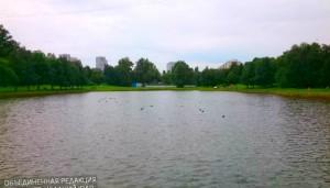 Мастер-класс по рисованию организуют возле Чертановского пруда
