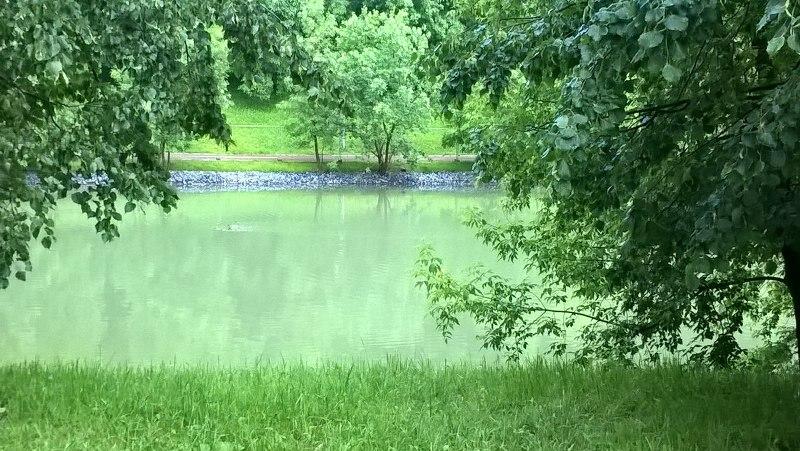 Чертановские пруды
